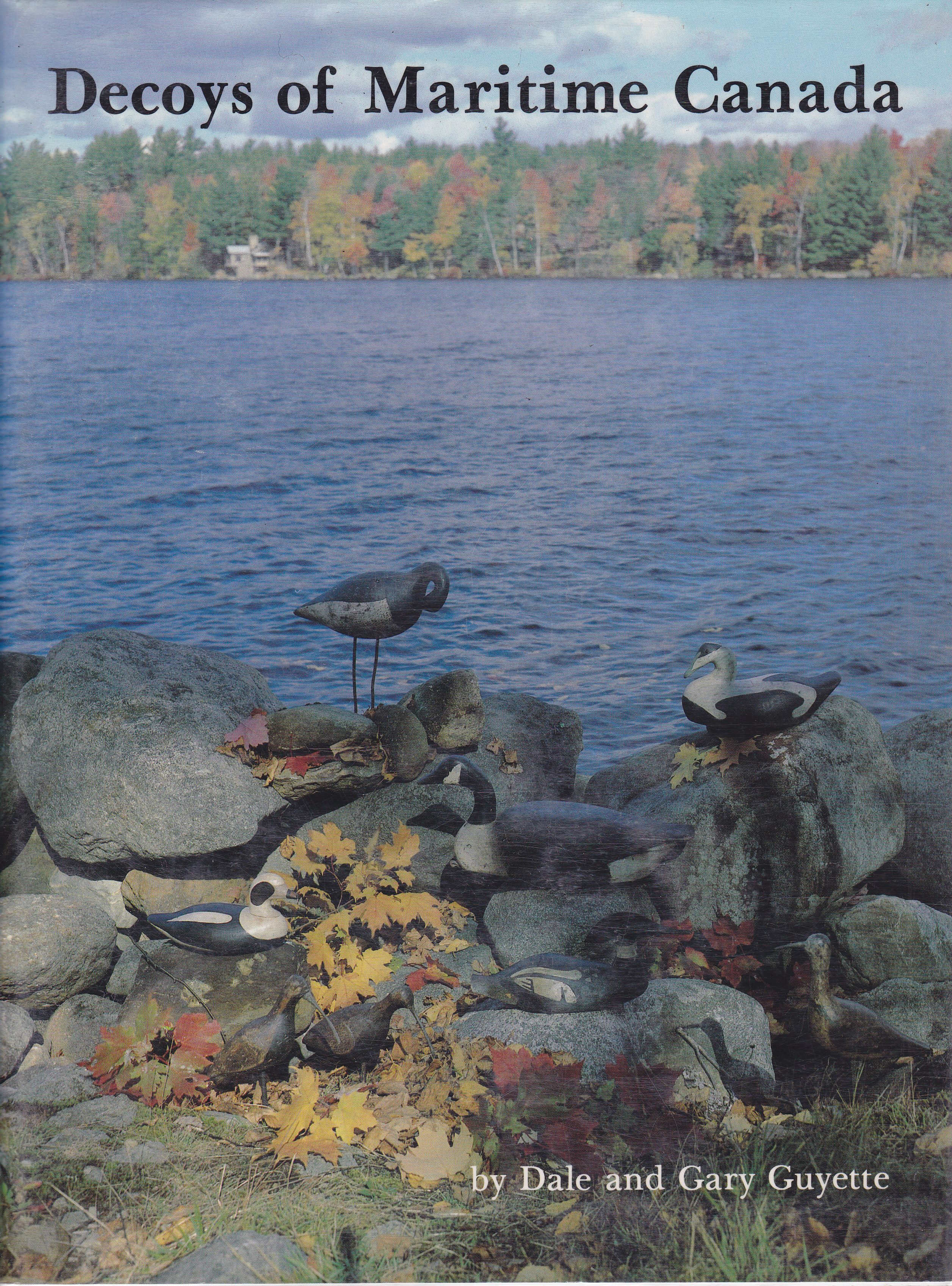 Image for Decoys of Maritime Canada
